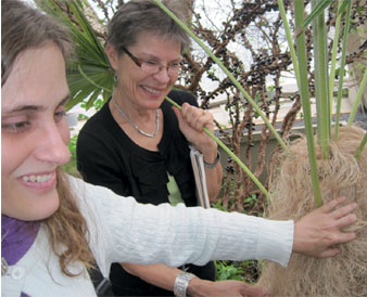 Young woman is directed to feel the different features of a palm plant growing in Denver at the Botanic Gardens. She is on a touch tour of the conservatory lead  by Mervi Hjelmroos-Koski. This blog features posts about the Colorado Center for the Bind student's adventures as we tour galleries & museums and explore Colorado every chance we get. It also posts progress reports as new projects are completed.